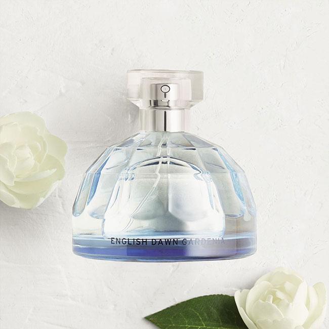 angol-hajnali-gardenia