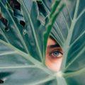 öko tippek a környezetbarát életmódhoz
